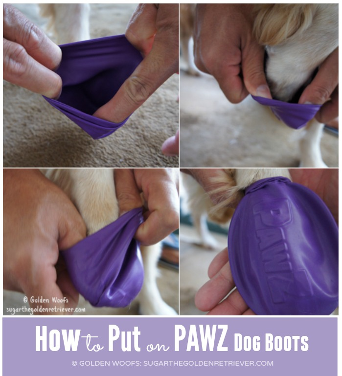 How to put PAWZ dog boots