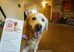 Red Roof Inn Pet Policy