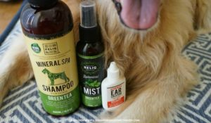 Reliq Pet Sampler Wellness
