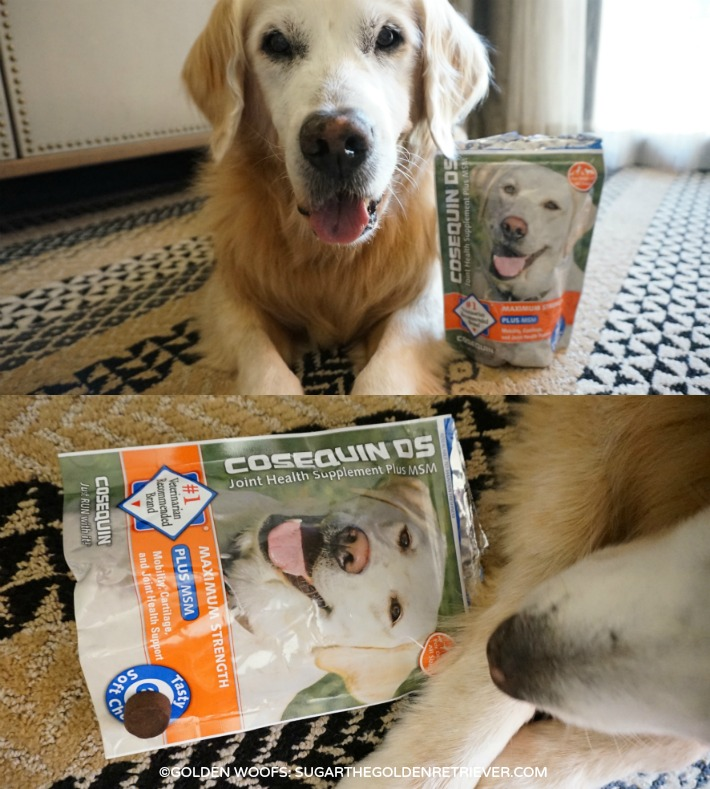 dog supplement consequin