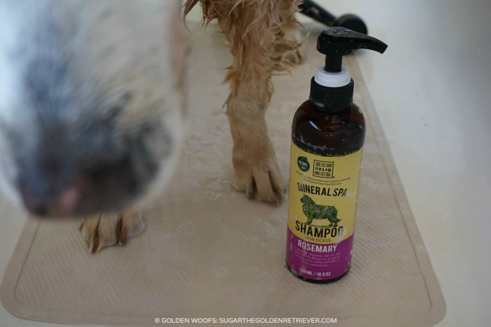 RELIQ Mineral Spa Shampoo Rosemary