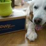 West Paw Toppl from Chewy.com #ChewyInfluencer