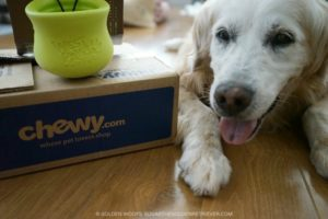 West Paw Toppl at Chewy.com