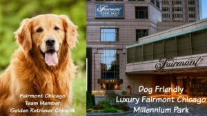 dog friendly luxury fairmont chicago