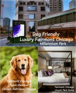dog friendly luxury fairmont chicago Millennium Park