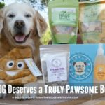 Your Dog Deserves a Truly Pawsome Box