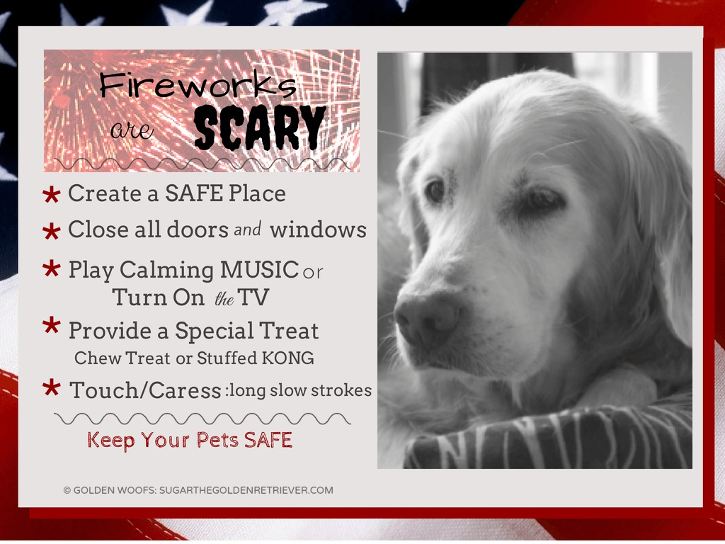 Fireworks Tips for Pets