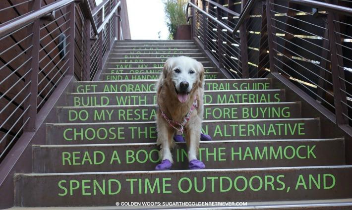 take the reminder stairs