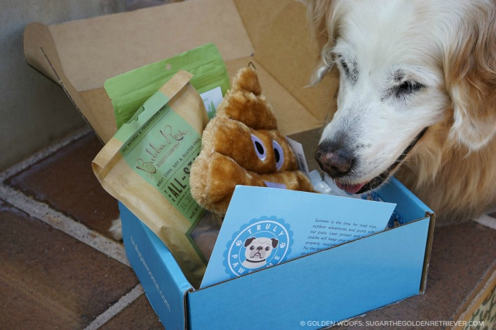 truly pawsome subscription box