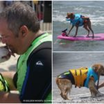 11 Things You'll Learn From A Surf Dog #SurfDogUnleashed