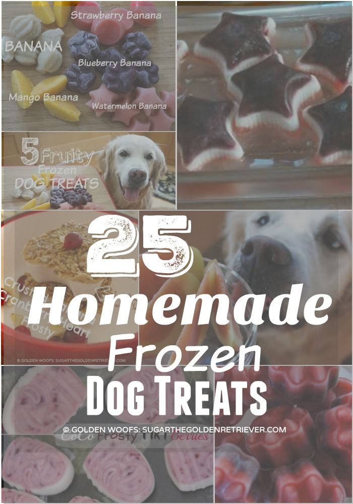25 Homemade frozen dog treats