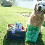 #ScoopThatPoop Frisco Handle Dog Poop Bags #ChewyInfluencer