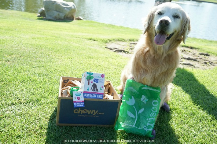 #ScoopThatPoop Frisco Handle Dog Poop Bags #ChewyInfluencer