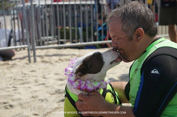 Faith Surfing Dog Human Bond