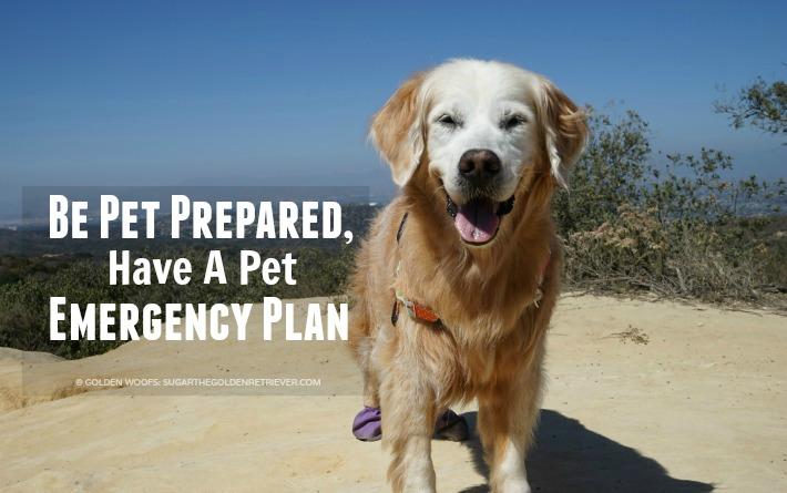 Be Pet Prepared, Have A Pet Emergency Plan #BlogPaws