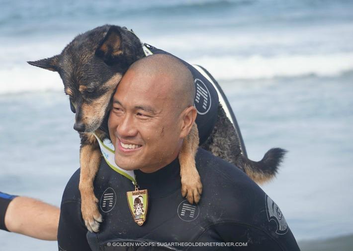 Abbie Surf Dog
