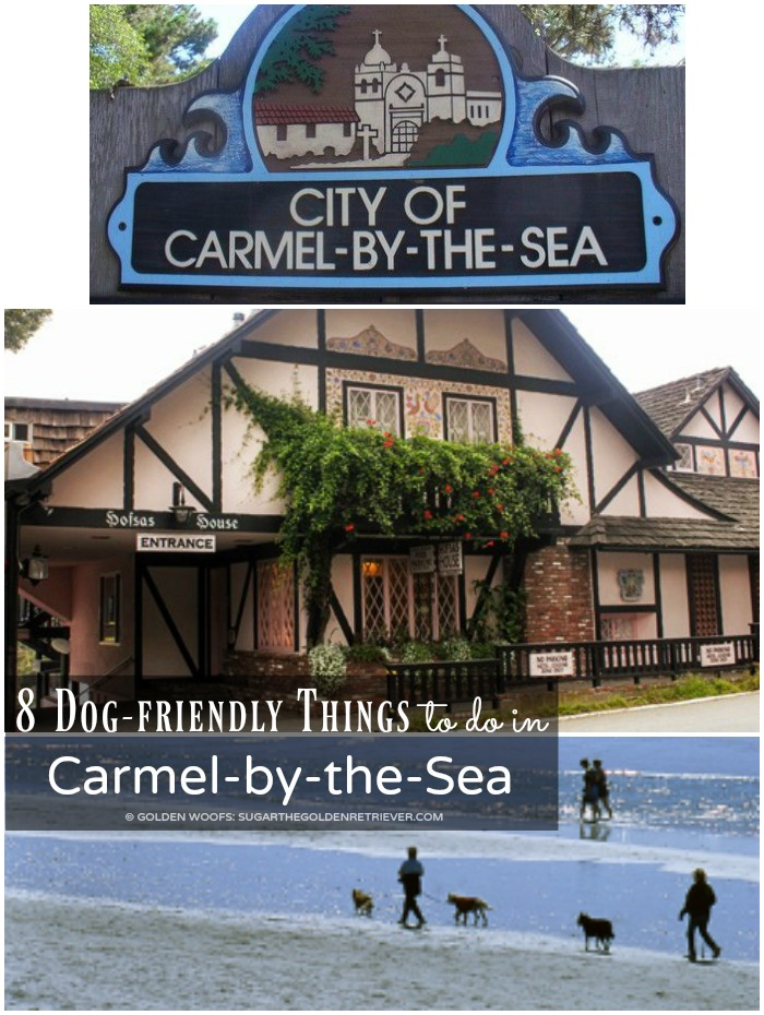 dog friendly Carmel by the Sea