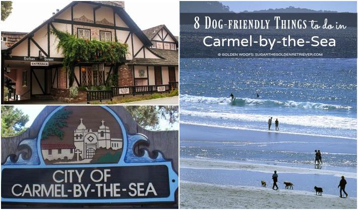 Carmel By The Sea Dog Friendly Hotels