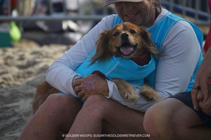 Happy Surfing Dog