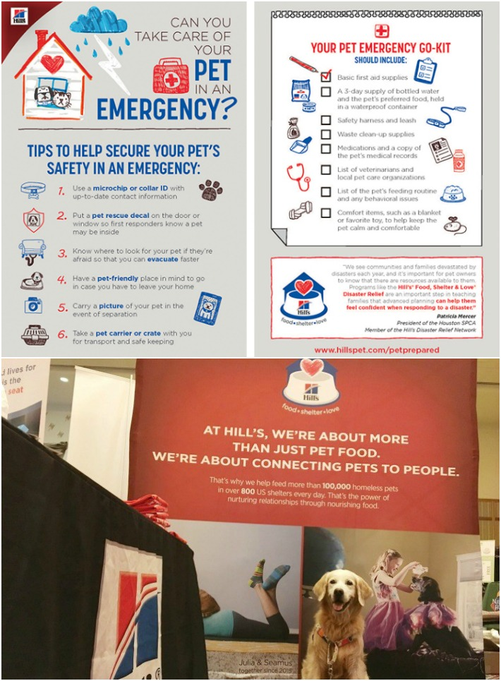 Infographic Pet Emergency Go Kit