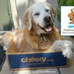 RSVP #ChewyChat Twitter Chat with Chewy.com