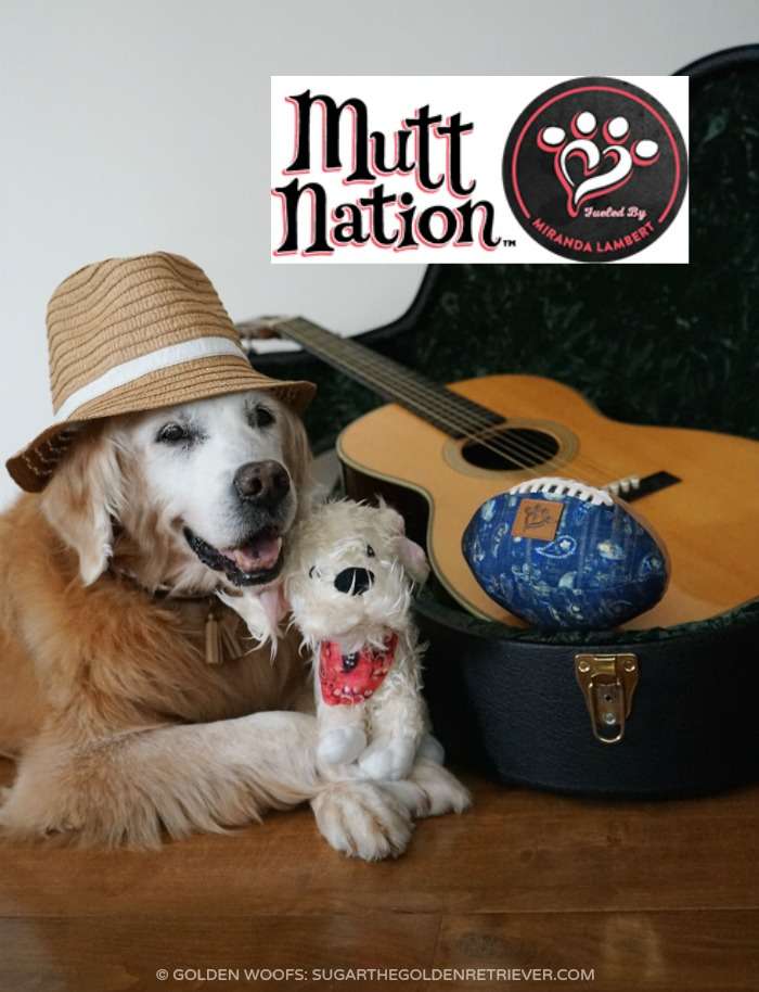 Petmate Pet Products MuttNation