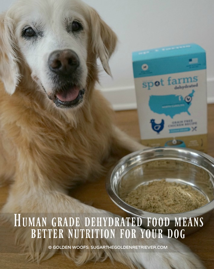 Spot Farms Dehydrated Dog food