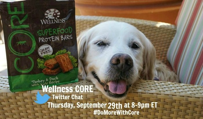 Join Wellness CORE Twitter Chat #DoMoreWithCore