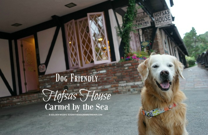 Dog Friendly Hofsas House Carmel by the Sea