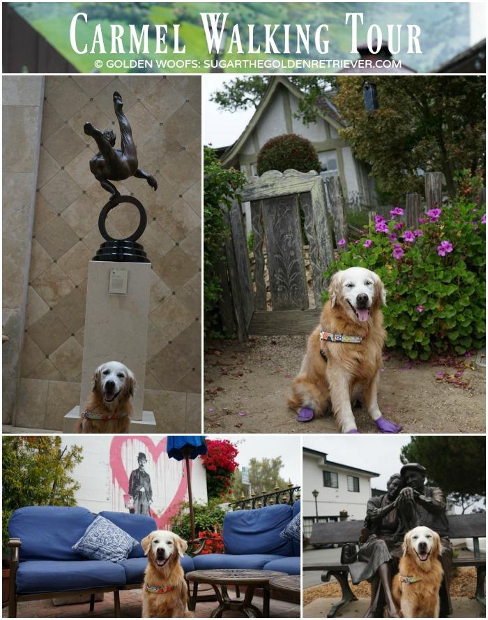 dog friendly Carmel walking tour