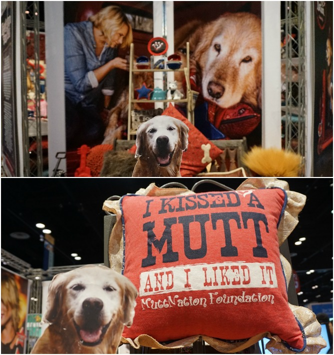global pet expo Petmate MuttNation