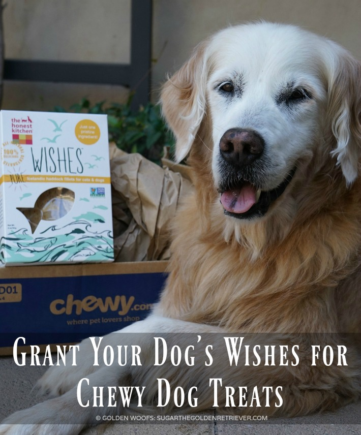 Chewy Dog Treats   Honest Kitchen WISHES