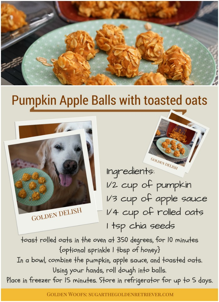 Homemade Pumpkin Apple Dog Treats