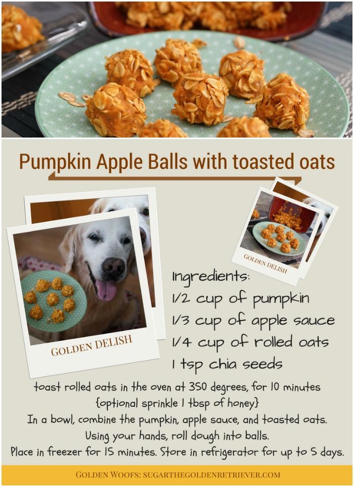 Homemade Pumpkin Apple Dog Treats