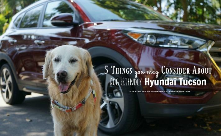 5 Things You May Consider About Dog Friendly Hyundai Tucson #DriveHyundai