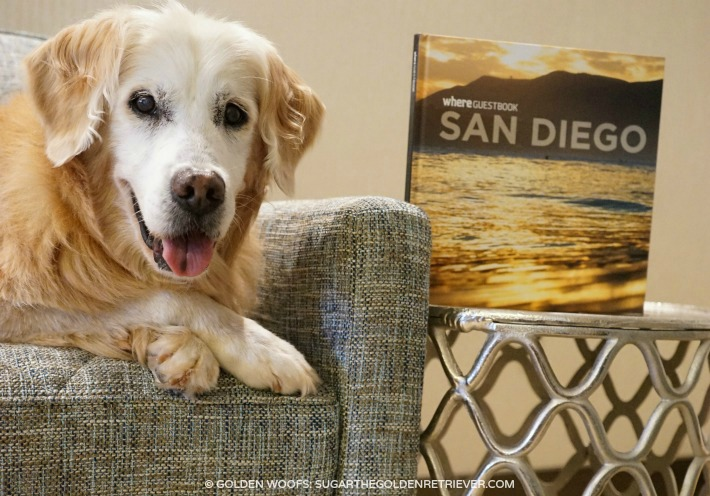 Pet Travel San Diego