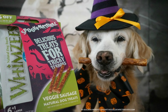 Spooky Natural WHIMZEES Dog Treats