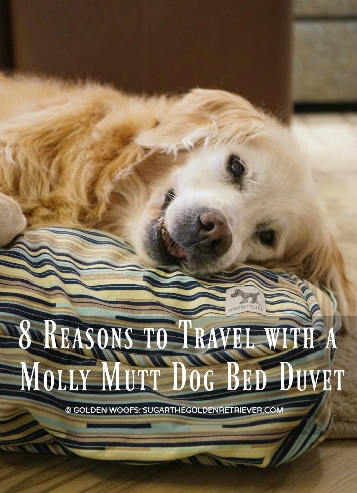 travel dog bed Molly Mutt duvet
