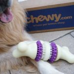 Chewy.com Delivers Busy Buddy Dog Toy #ChewyInfluencer