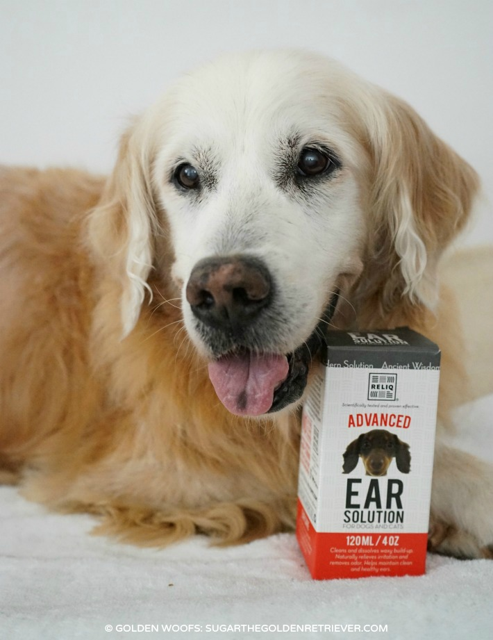 Dog Ear Cleaning Solution