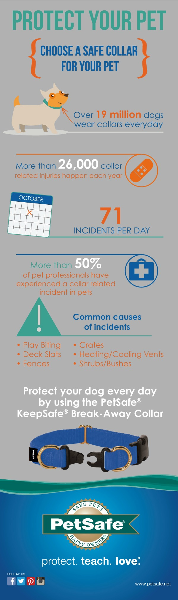 Safe Dog Collar Infographic