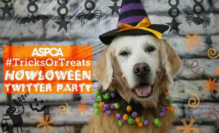 ASPCA Tricks or Treats