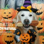 Have A Healthy WHIMZEES #SpookyNatural Halloween