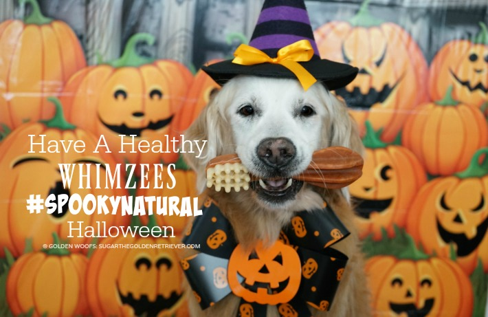 have a healthy whimzees spookynatural halloween