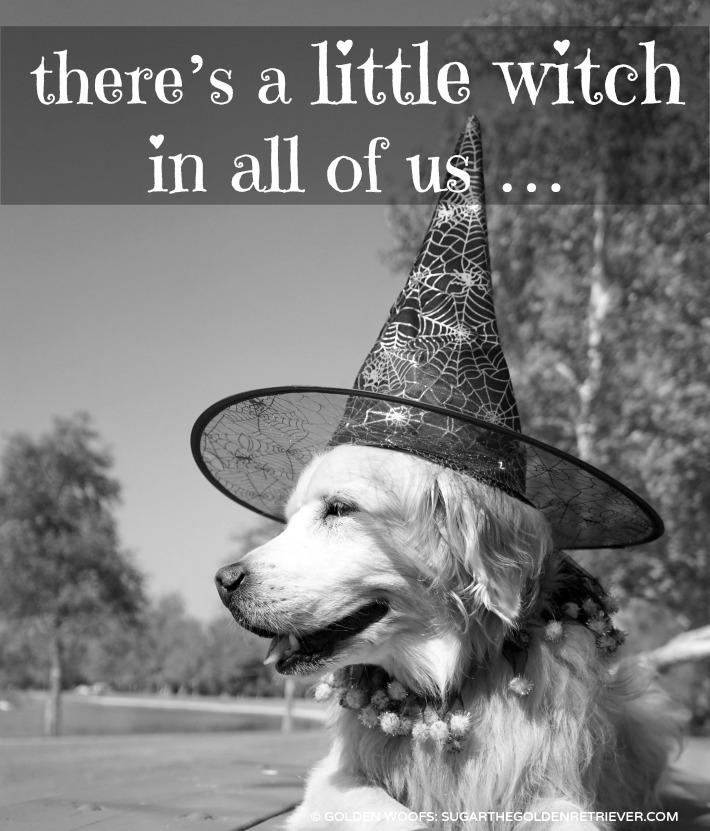 Witch Dog