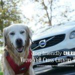 Luxurious Dog Friendly Car Ride V60 Cross Country #DriveVolvo