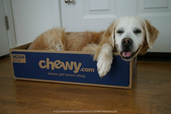 Pet Happiness Chewy.com