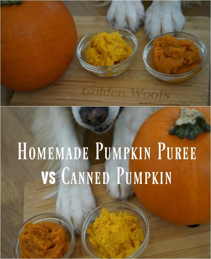 Homemade Pumpkin Puree or Canned Pumpkin