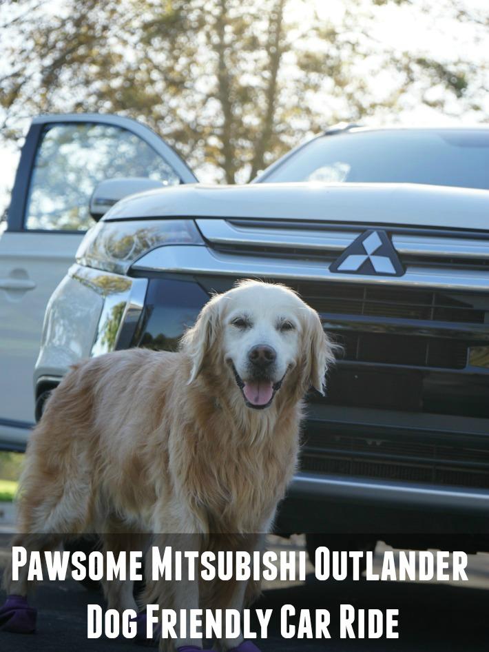 Outlander dog friendly car ride