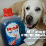 Help Cats in Need with Persil ProClean Laundry Detergent #Purrsil Campaign